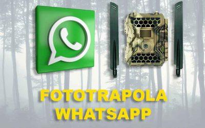 Fototrappola Whatsapp
